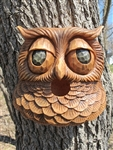 Novelty Birdhouse Owl
